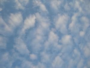 晩秋 鰯雲
